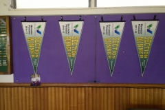 Our pennants in 2016-8